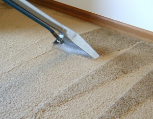 home information-carpet cleaning-home improvement ideas
