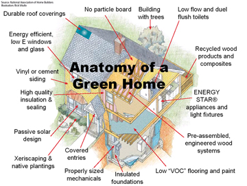 Building A Green Home Home Information Guru Com