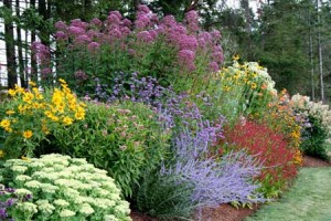 Pre Designed Perennial Gardens Garden ideas and garden design