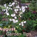 garden calender