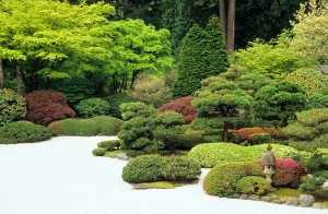 Creating Japanese Gardens Part 20