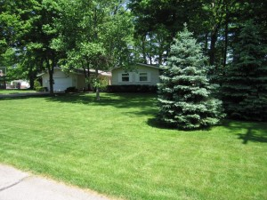 home information-lawn-home improvement ideas