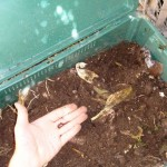 home information-composting-home improvement ideas