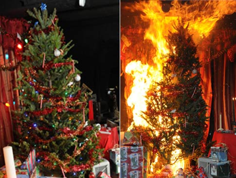 Ways To Protect Yourself From Christmas Tree Fires? - Home ...