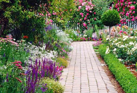 Choosing the Right Perennial Flowers and Plants for Your Garden – Perennial Garden Plants