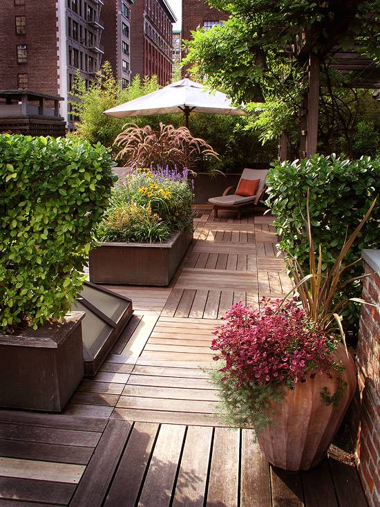 deck plants Part - 3: delightful deck plants good ideas