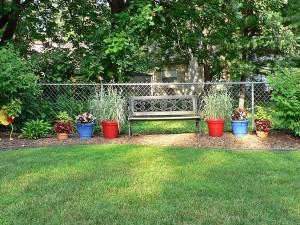 Backyard 8