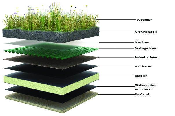 how a green roof is constructed-home information guru