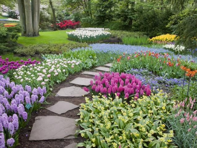 Backyard Landscaping Ideas on a Budget