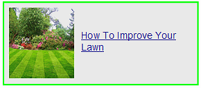 how to improve your lawn